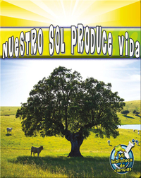 Nuestro Sol Produce Vida (Our Sun Brings Life)