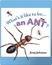 What's It Like To Be An Ant?