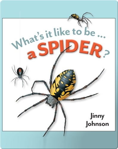 What's It Like To Be A Spider?