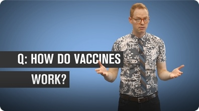 How Do Vaccines Work?