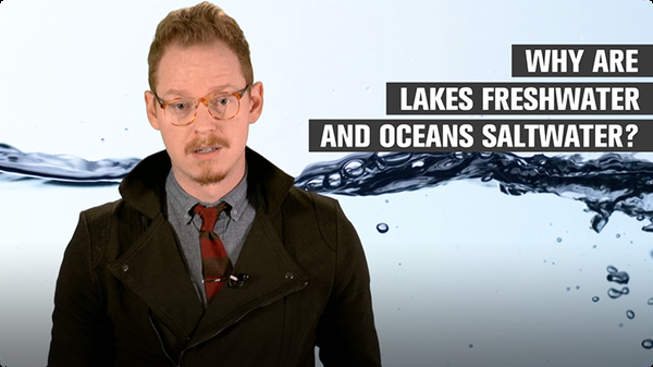Why Are Lakes Freshwater and Oceans Saltwater?