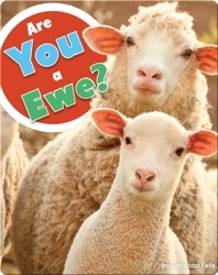 Are You A Ewe?
