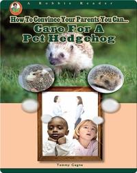 Care for a Pet Hedgehog
