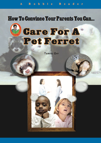 Care for a Pet Ferret