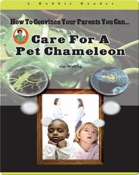 Care for a Pet Chameleon