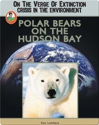 Polar Bears on the Hudson Bay