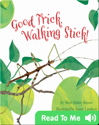 Good Trick Walking Stick