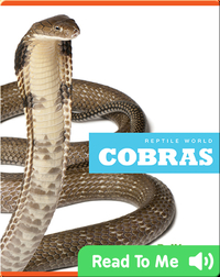 Reptile World: Cobras