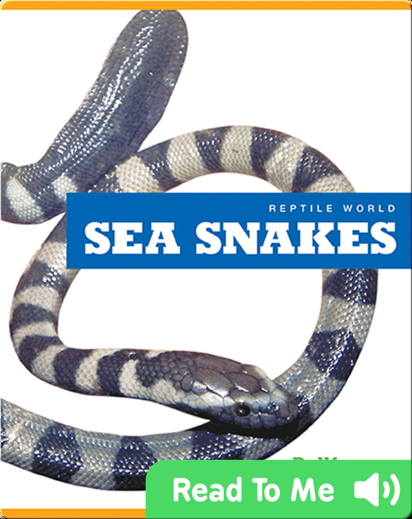 Reptile World: Sea Snakes
