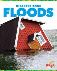 Disaster Zone: Floods