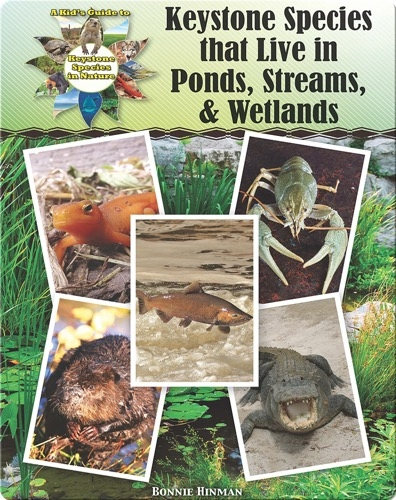 Keystone Species that Live in Ponds, Streams, & Wetlands