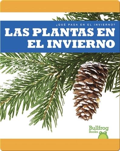 Las Plantas en el Invierno (¿Qué Pasa en el Invierno?)