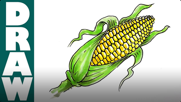 How to Draw a Corn Cob