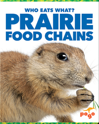 Who Eats What? Prairie Food Chains