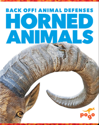 Back Off! Horned Animals