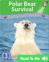Polar Bear Survival