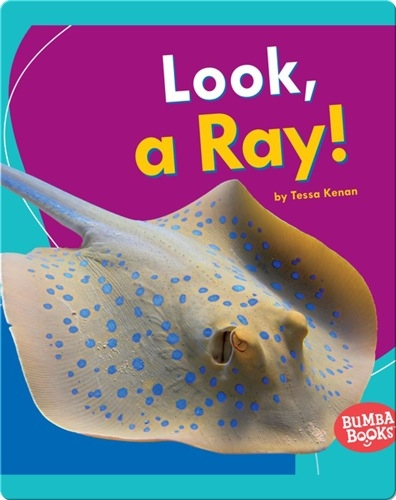 Look, a Ray!
