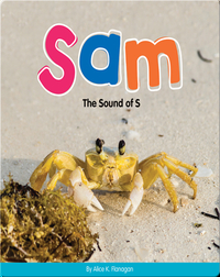 Sam: The Sound of S