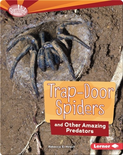 Trap-Door Spiders and Other Amazing Predators