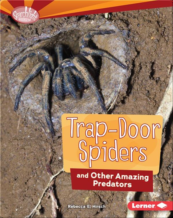 Trap-Door Spiders and Other Amazing Predators