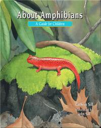 About Amphibians