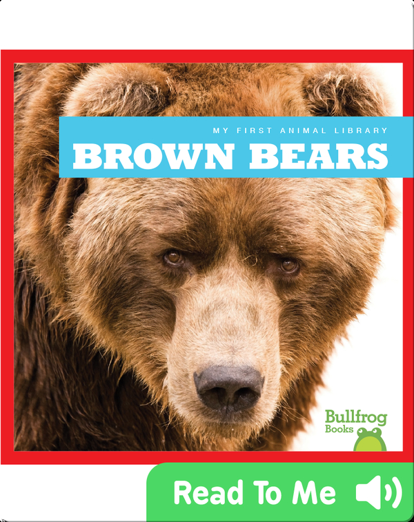 My First Animal Library: Brown Bears