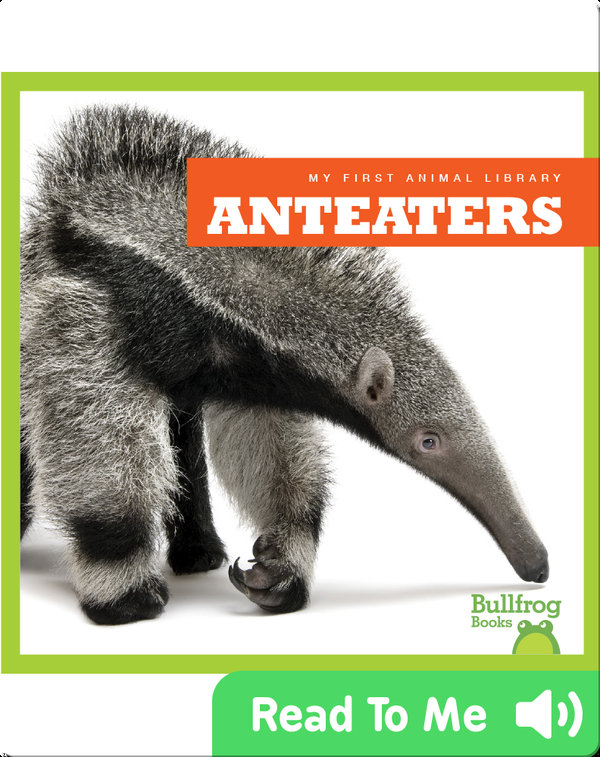 My First Animal Library: Anteaters