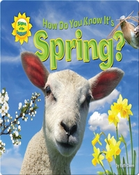 How Do You Know It's Spring?