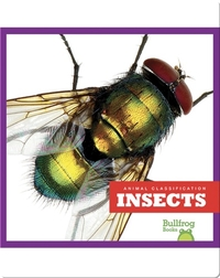 Animal Classification: Insects