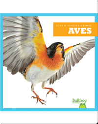 Clasificación Animal: Birds