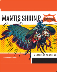 Mantis Shrimp: Master of Punching