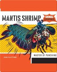 Mantis Shrimp: Master of Punching