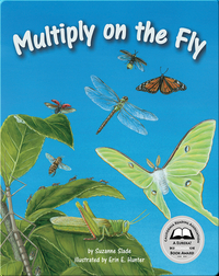 Multiply on the Fly