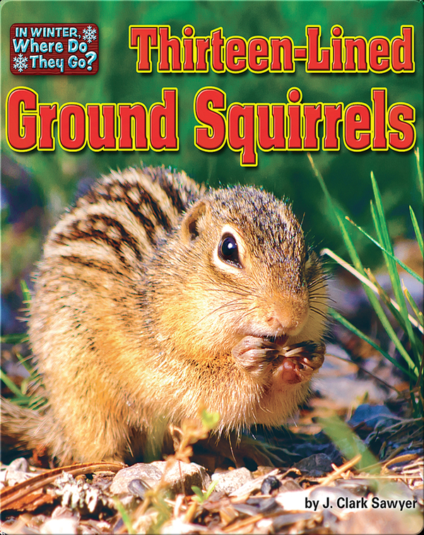 Thirteen-Lined Ground Squirrels