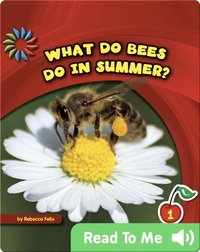 What Do Bees Do in Summer?