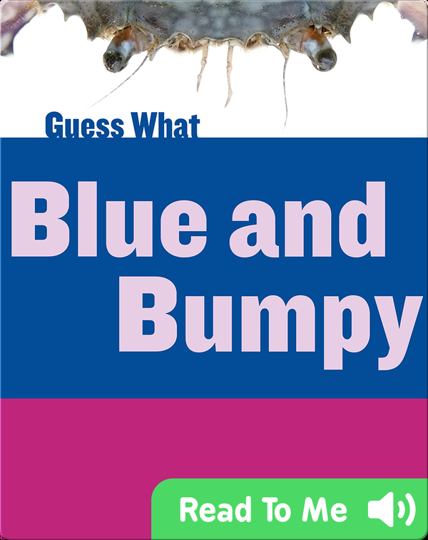 Blue and Bumpy