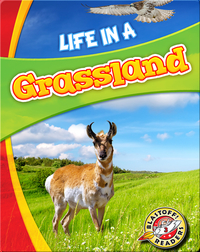 Life in a Grassland (Biomes Alive!)