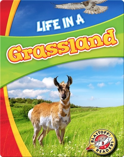 Life in a Grassland (Biomes Alive!)