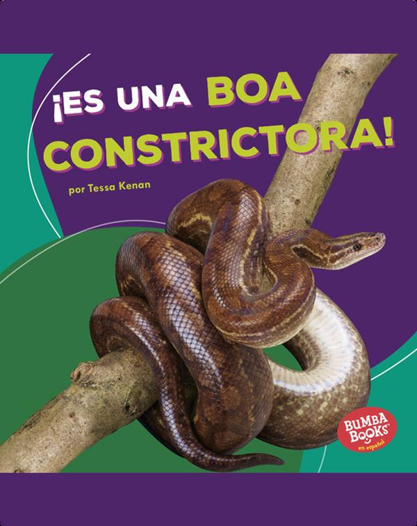 ¡Es una boa constrictora! (It's a Boa Constrictor!)