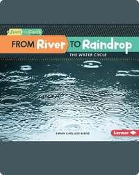 From River to Raindrop: The Water Cycle