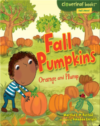 Fall Pumpkins: Orange and Plump