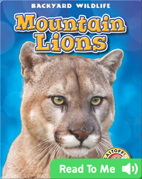 Backyard Wildlife: Mountain Lions