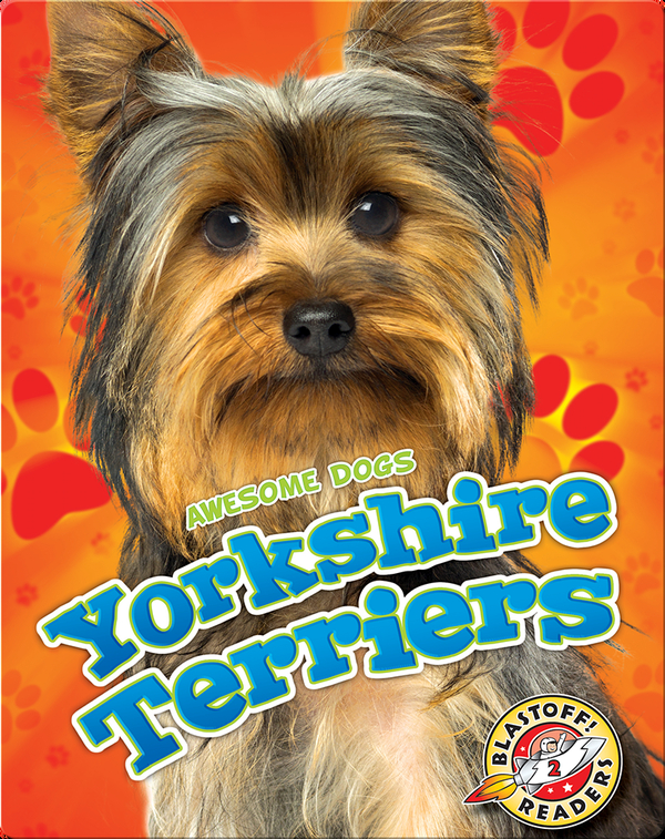 Awesome Dogs: Yorkshire Terriers