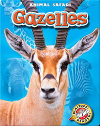 Gazelles: Animal Safari