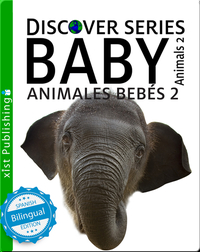 Animales Bebés 2/ Baby Animals 2