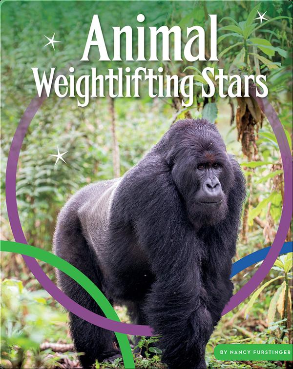 Animal Weightlifting Stars