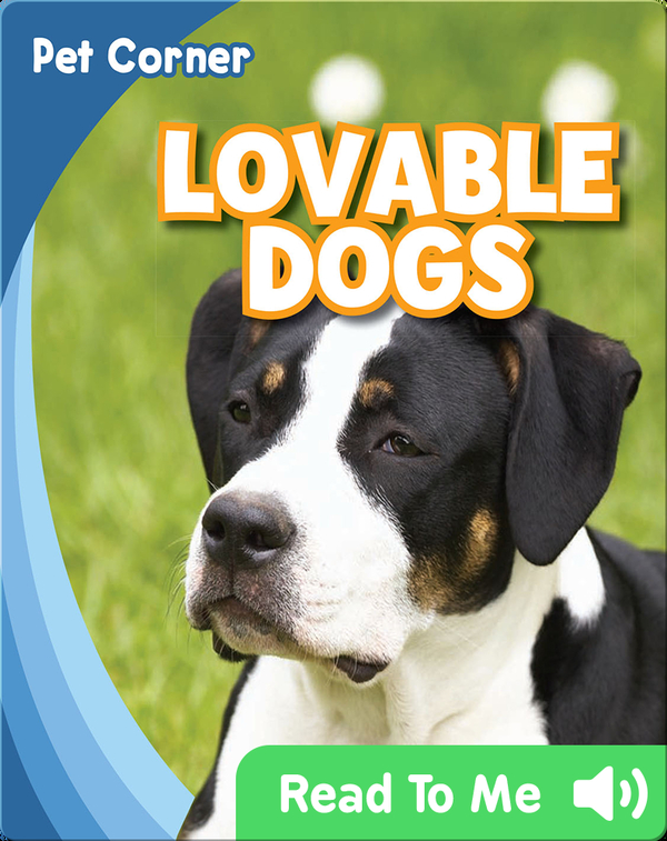 Lovable Dogs