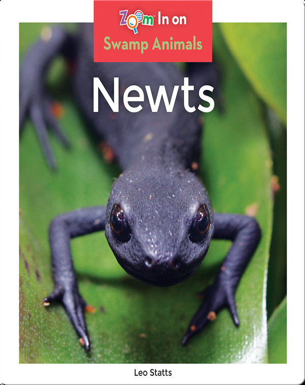 Newts