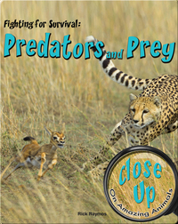 Fighting for Survival: Predators and Prey
