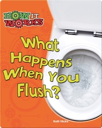 What Happens When You Flush?